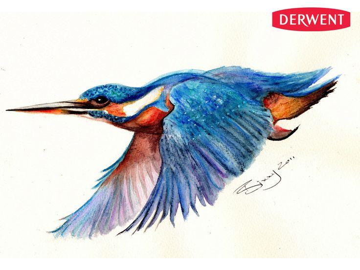 Kresba Watercolour Akvarelove Pastelky 12ks Derwent Vytvarne